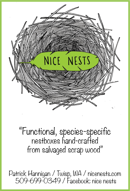 Nice Nests 042116