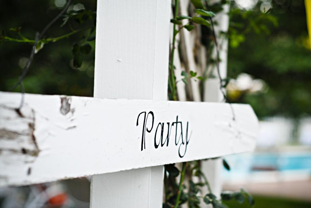 Hanning-Wedding-Party-w
